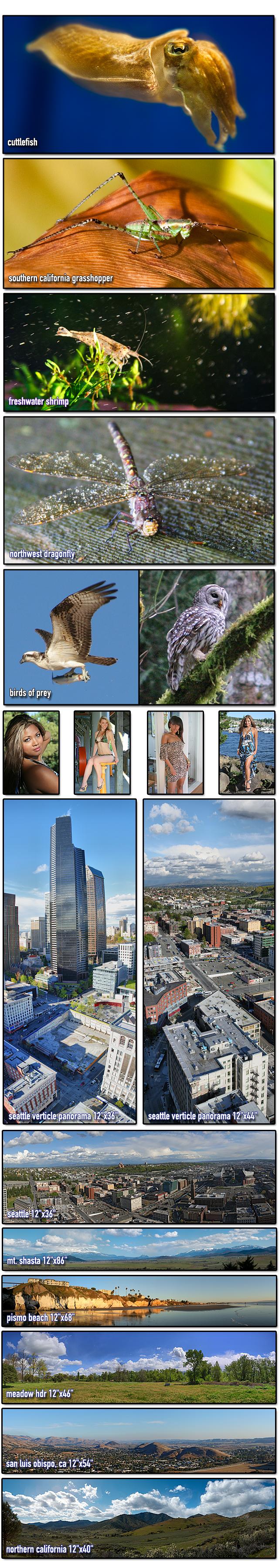 http://www.s295781917.onlinehome.us/wsb5461660001/Macro-Advert-Edited.jpg